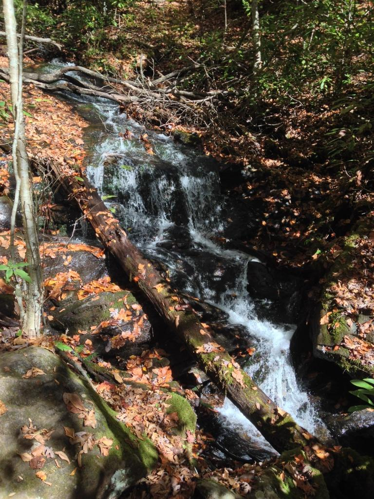 Falls near Winding Stair Gap