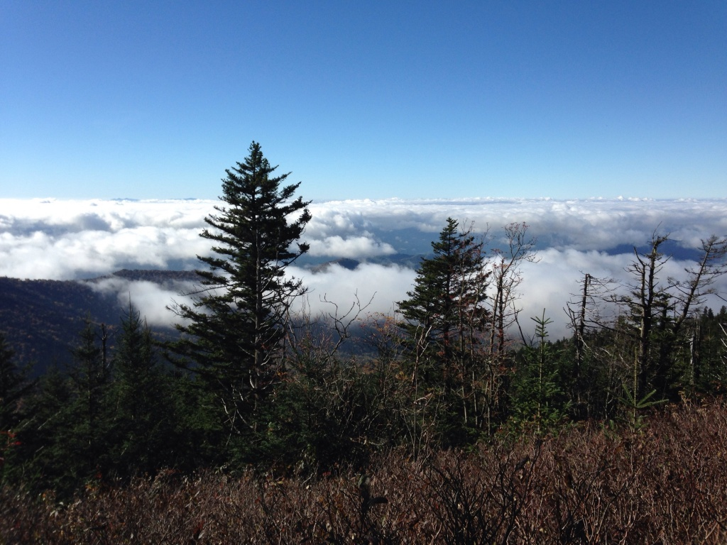 view from Clingman's Dome Observation Tower